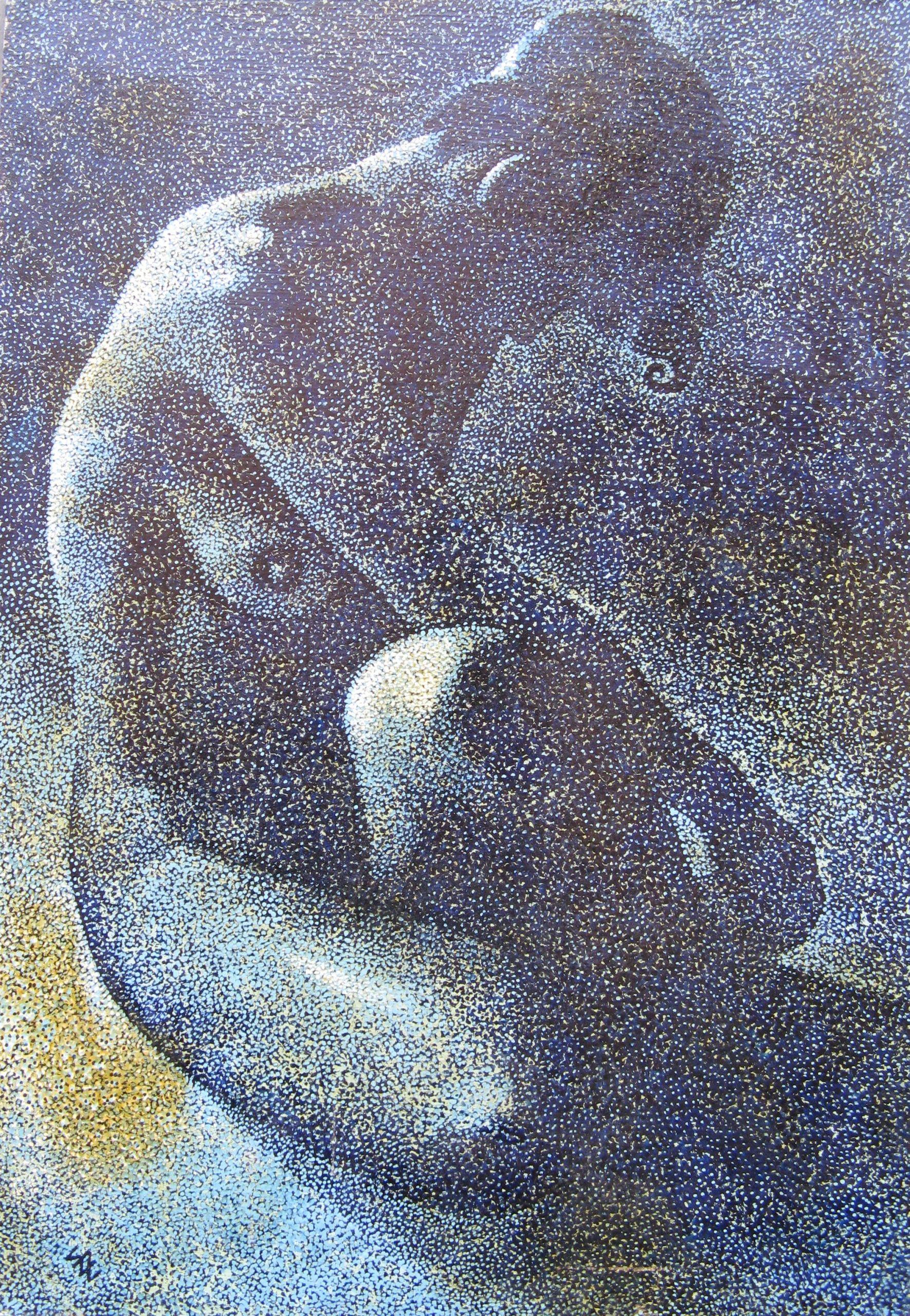 ΖΑΧΑΡΟΠΟΥΛΟΣ Στέλιος  (1924 - 1997)