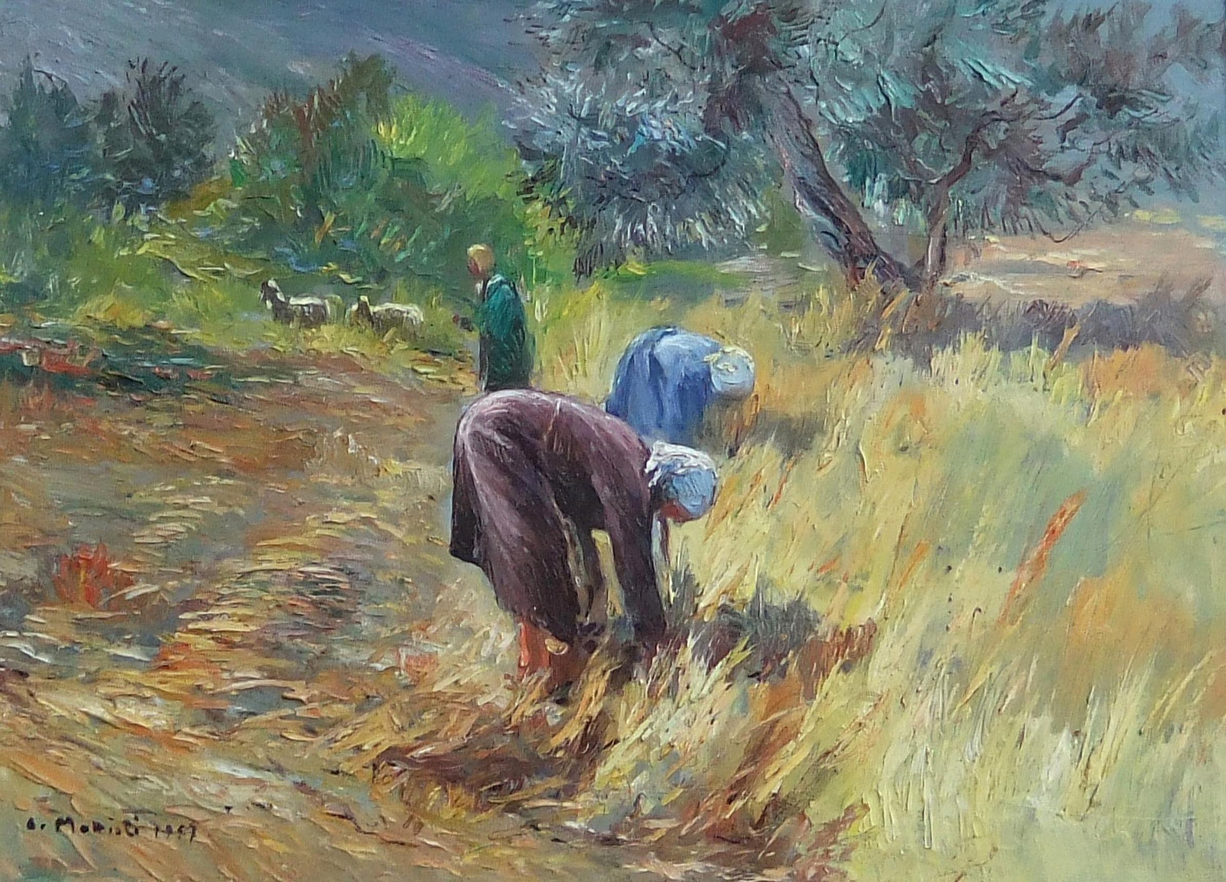 ΜΑΤΤΙΟΛΙ Αρμενο (1920 - 2012)